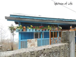 An Arunachali Cottage