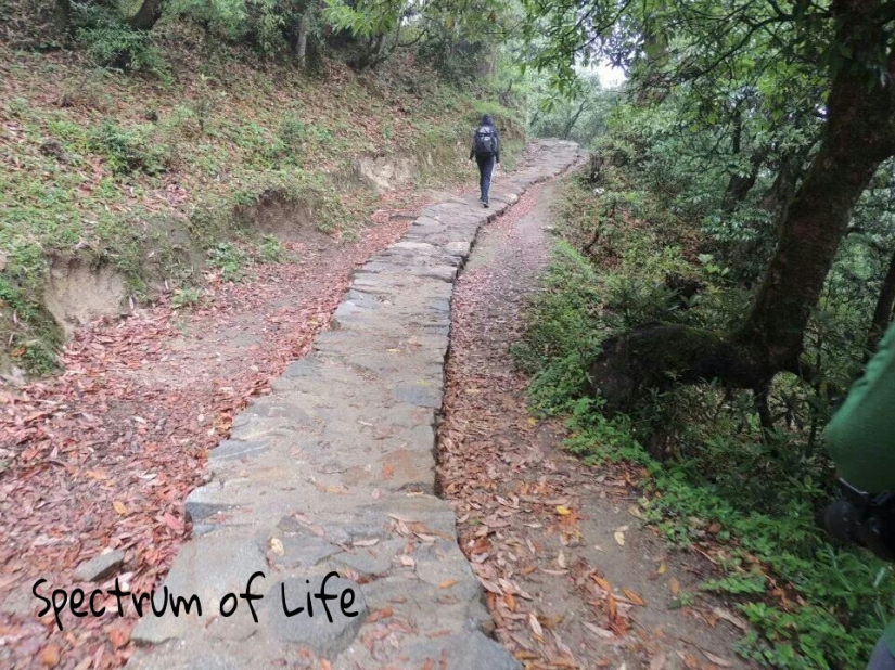The pathway leading to Deoria tal