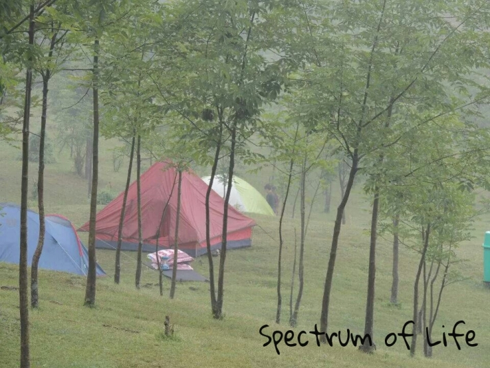 Lots of other travellers along with us.....in colorful tents