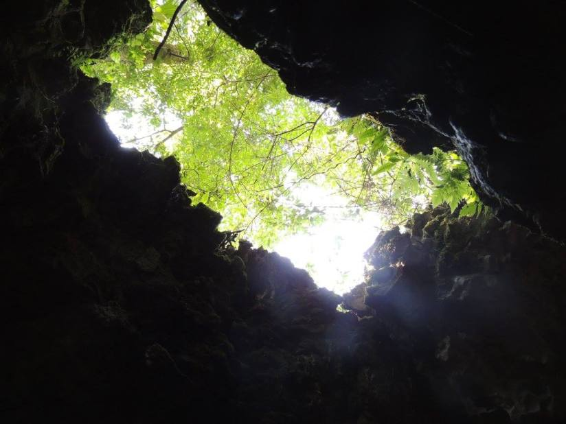 A view of the outside from inside of the cave